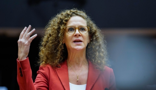 EU Parliamentarian in 't Veld in effort to nudge EU Commission into action over 'Accidentals'